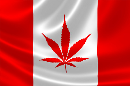 3D illustration of Canadian flag with Cannabis plant instead of maple leaf. Concept of legalization of marijuana in Canada in 2018.