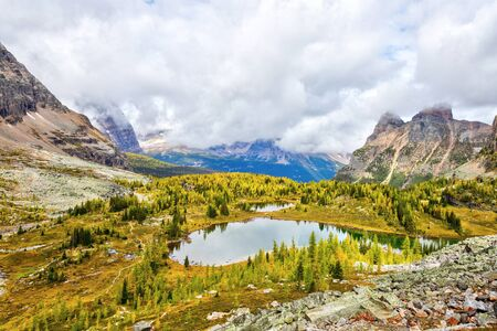 Golden larch trees surround Hungabee Lake and Moor Lakes on the Opabin Trail at Lake O'Hara in Yoho National Park with Mount Shaffer and Yukness Mountain in the background.