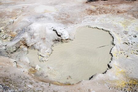 Sulphur Cauldron at Mud Volcano area of Yellowstone National Park is one of the park's most acid hot springs with temperatures around 190 degrees Fahrenheit.
