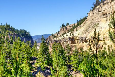 Overhanging Cliff at Tower Fall in Yellowstone National Park are massive rock columns formed by lava flow 1.3 million years ago. The vertical basalt columns look like rock fence posts.