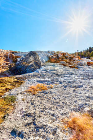 Palette Spring with deliberate sun flare at Mammoth Hot Springs in Yellowstone National Park. Colorful thermophiles create a changing palette dominated by hues of orange and brown.