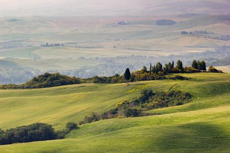 トスカーナ、イタリア。春のオルチャ渓谷の風景