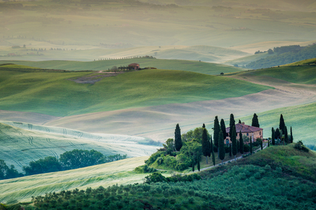 Val dOrcia, Tuscany, Italy. A lonely farmhouse with cypress and olive trees, rolling hills.