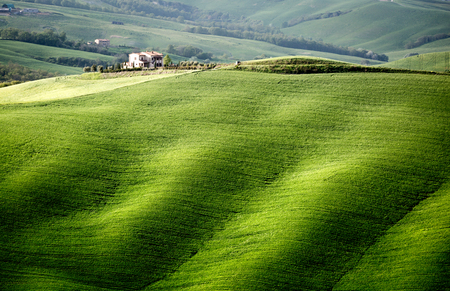 Val dOrcia, Tuscany, Italy. A lonely farmhouse with cypress trees standing in line in foreground. Stok Fotoğraf