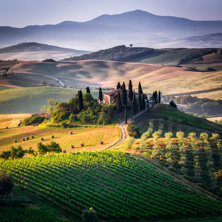 Val d'Orcia, Tuscany, Italy. A lonely farmhouse with cypress and olive trees, rolling hills. Sajtókép
