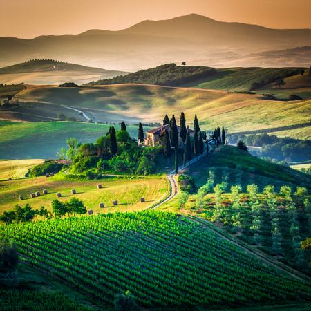 Val d'Orcia, Toscane, Italië. Een eenzame boerderij met cipres- en olijfbomen, glooiende heuvels. Stockfoto