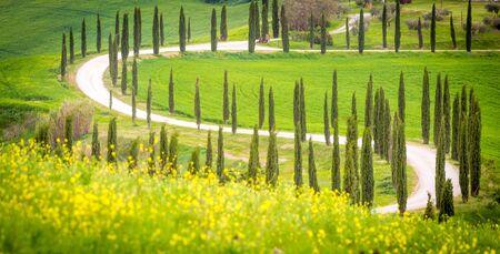 クレテ ・ セネージ、トスカーナ、イタリア。