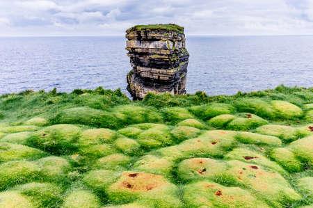 Downpatrick Head rock and green carpet of soft grass bubbles. Ireland Фото со стока