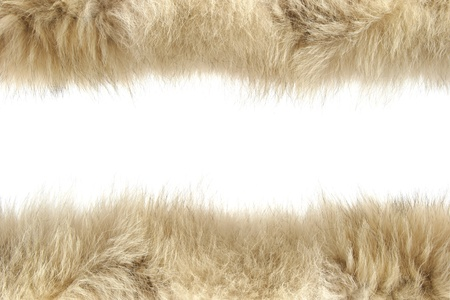 Fluffy wool texture photo