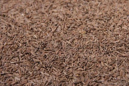 Caraway seeds photo