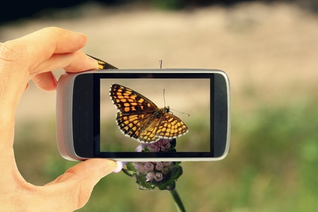 Taking picture with mobile phone Stock Photo