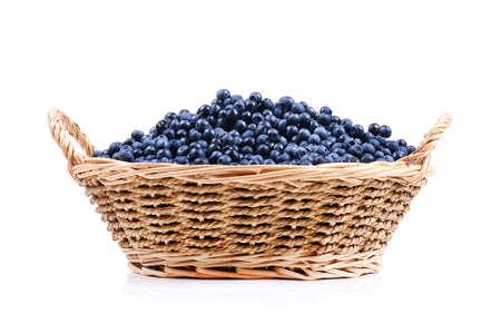 blueberry basket photo