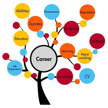work experience: career concept tree Stock Photo