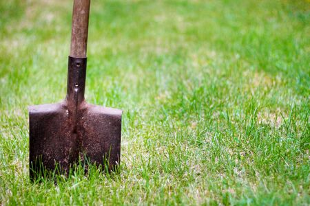 spades: shovel in green grass