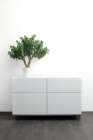 chest of drawers: white chest of drawers with flower pot in bright interior