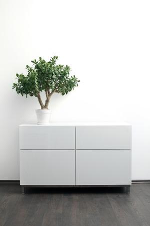 witte commode met bloempot op het lichte interieur