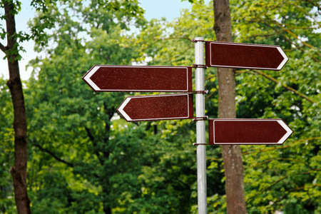 blank way direction signs on green tree background photo