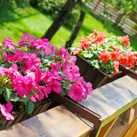 flower boxes: balcony flower boxes filled with flowers Stock Photo