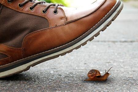 boot and snail Stok Fotoğraf