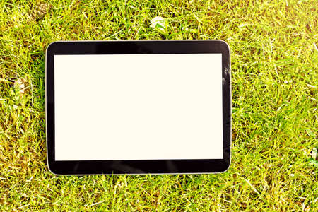 blank tablet: blank digital tablet lying on green grass Stock Photo