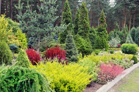 flower garden: garden landscape Stock Photo