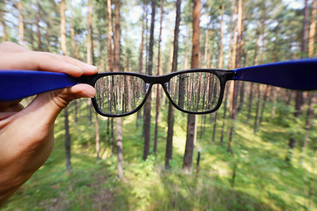 optical: optical eyeglasses in the hand over blurred forest background