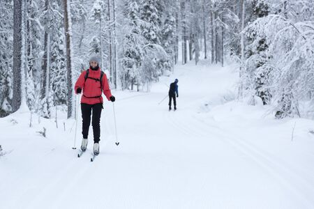 crosscountry: woman cross-country skiing in the snowy forest Stock Photo