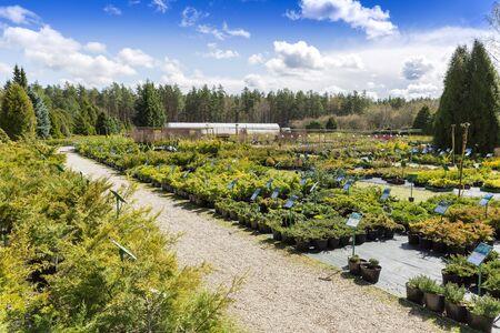 anuncio publicitario: vivero de plantas al aire libre