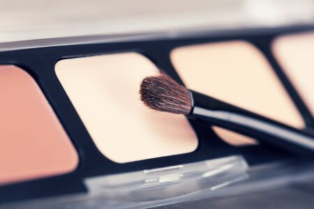 nudes: closeup of eyeshadow palette with makeup brush Stock Photo