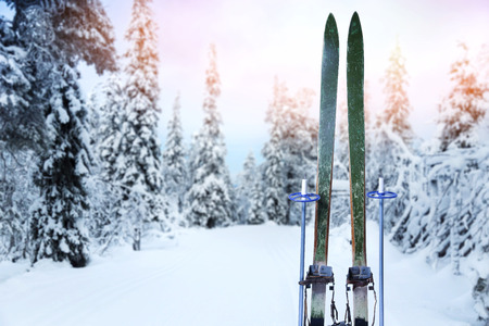 snowy cross country ski trail with retro wood skis and ski poles