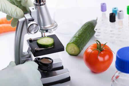 productos quimicos: Concepto de control de calidad de alimentos - científico inspeccionar pepino con microscopio en laboratorio Foto de archivo