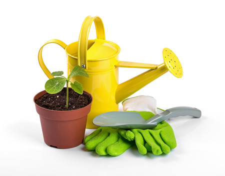 work gloves: gardening tools and potted plant isolated on white background Stock Photo