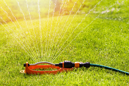 spaying: lawn sprinkler spaying water over green grass irrigation system