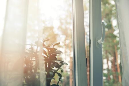 otwarte białe plastikowe okno pcv z leśnym tłem