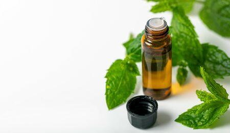 mint essential oil bottle and green leaf on white background with copy space