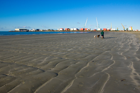 A guy walking with 2 dogs on the beach at Timaru with blue sky