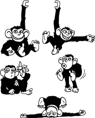 Various Monkeys