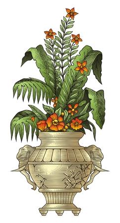 dog rose: Vase   Illustration