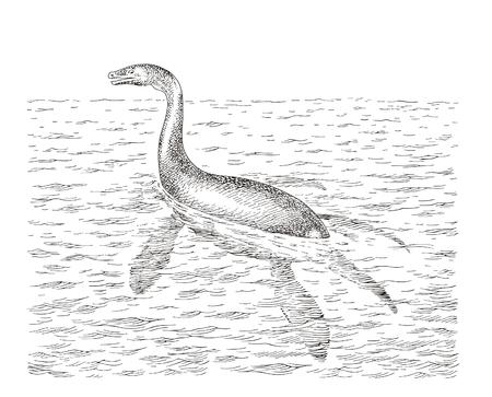 loch: Nessy  Illustration