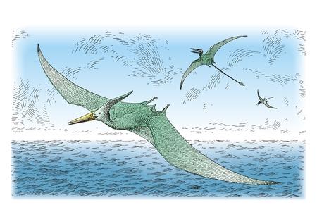 Oiseaux préhistoriques  Banque d'images - 9082117