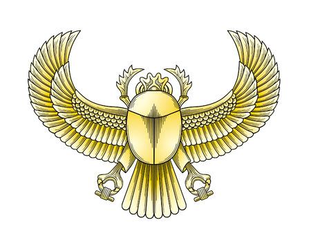 egyptian culture: Scarab vector