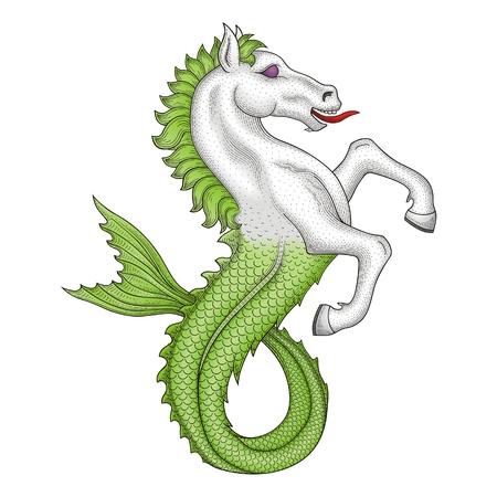 white coat: Horse fish