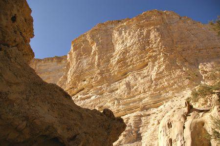 negev: Details of desert rocks formation Negev Israel Stock Photo