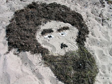 seaweeds: Beach art - Human face made of seaweeds and stones