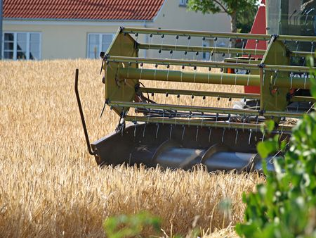 Big Combine in a wheat field in harvest time Stock Photo - 3321990