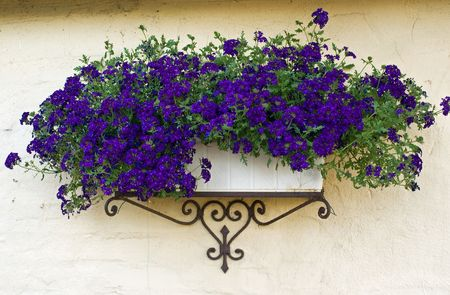 Beautiful classical design planter flowerpot on a bricks wall Standard-Bild