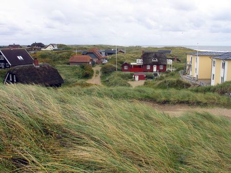 Traditional Danish summer houses with straw roofs west coast photo