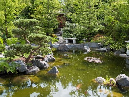 Beautiful classical garden fish pond surounded by trees photo