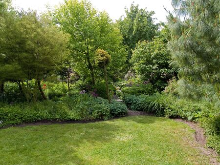Tranquil Beautiful Garden with Lush Green Trees and Grass photo