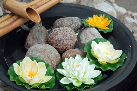 ikebana: Beautiful Japanese water lilies flowers arrangement with a bamboo waterfall  Stock Photo